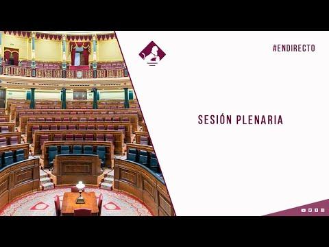 Sesión Plenaria (24/02/2021)