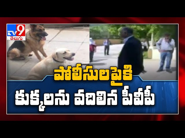 TNILIVE Crime News Roundup || Producer PVP Releases Dogs On To Police