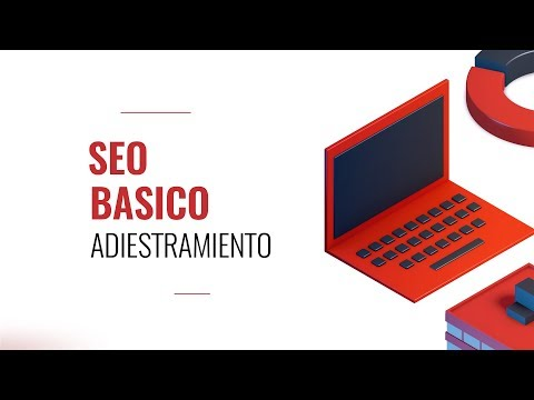 Entrenamiento en SEO Básico Coaching Program