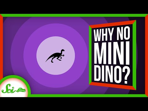 Where Are All the Tiny Dinosaurs?