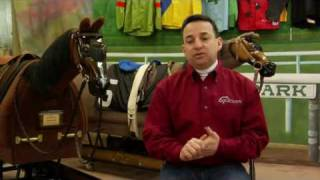 picture of Horse Trainer