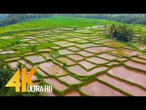 Fantastic Bali Aerial 4K Ultra HD - Island From Above - 2 HOUR Ambient Drone Film