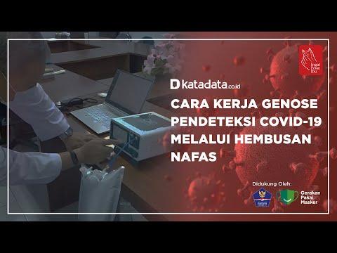 Cara Kerja Genose, Pendeteksi Covid-19 Melalui Hembusan Nafas   Katadata Indonesia