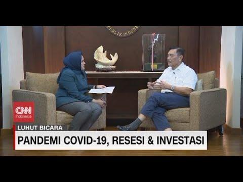 Pandemi Covid-19, Resesi & Investasi - Luhut Bicara
