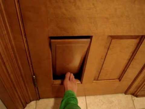 Clever Cat Litter Box Ragdoll Cat Door In A 6 Panel Door