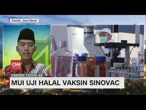 MUI Uji Halal Vaksin Sinovac
