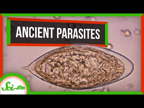 6 of the Oldest Parasites Ever Found