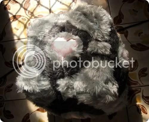 furry companion cube
