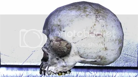Halo 3 Screenshot Skull