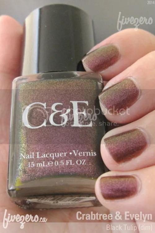 Crabtree and Evelyn Nail Lacquer in Black Tulip, swatch in shade