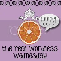 Real Wordless Wednesday