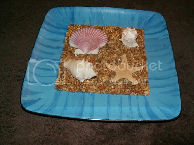 Seashell Decor 4