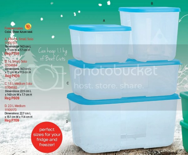 Best Tupperware For Freezer