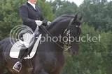dressage,friesian horse