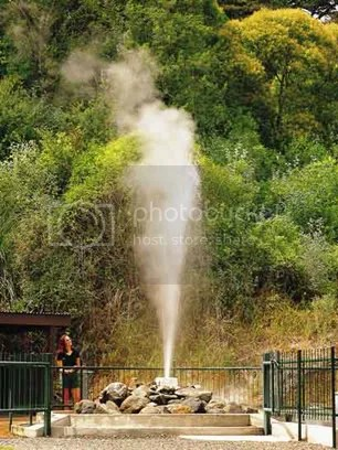 Te Aroha Geyser Paeroa - World Famous In New Zealand