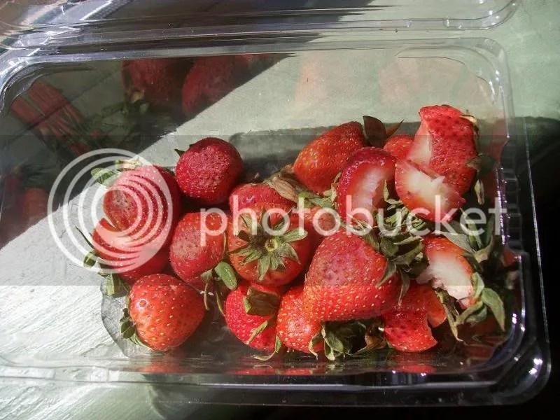 Rotten Organic Strawberries