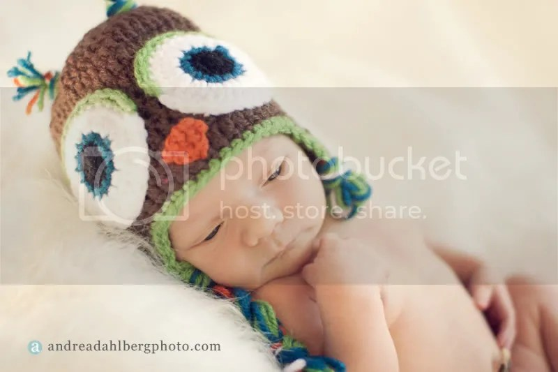 Crocheted Newborn Owl Hat by Becoming Homegrown and photography by Andrea Dahlberg Photography