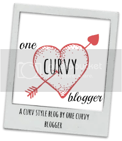 One Curvy Blogger