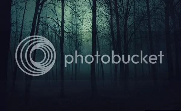 photo 232_zps75d551db.jpeg