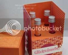 Reagenzgläser-Box