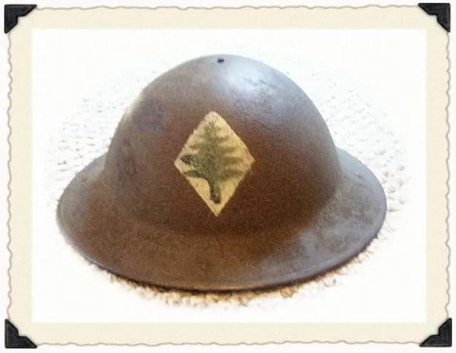 The 103rd Infantry Regiment (3/6)