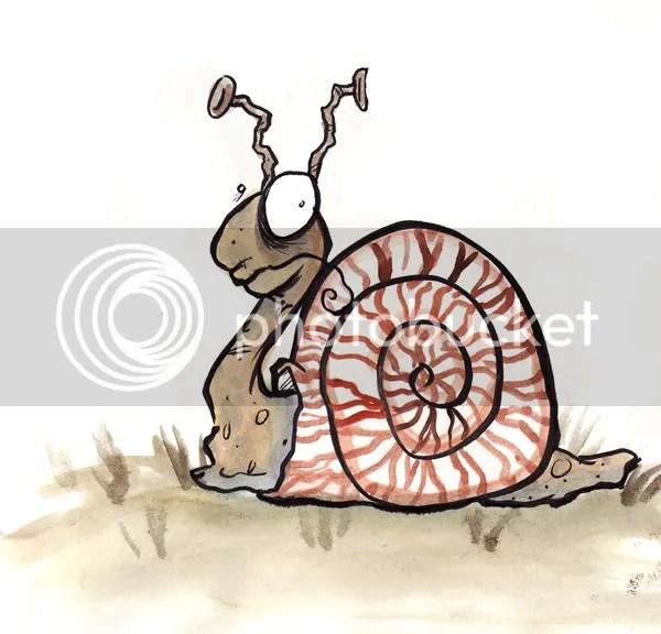 snailsm.jpg