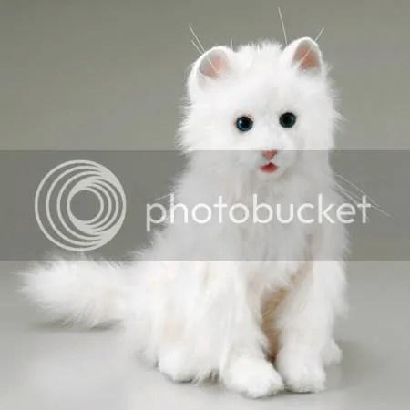 [Image: kucing-robot-cat.jpg]