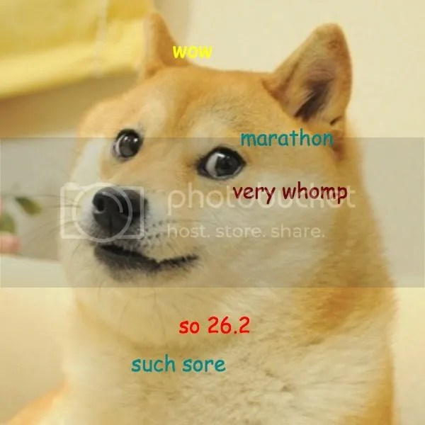 photo marathon doge.jpg