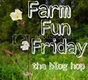 Farm Life at its Best