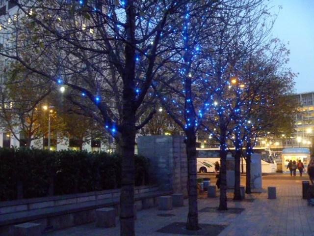 fairy light trees