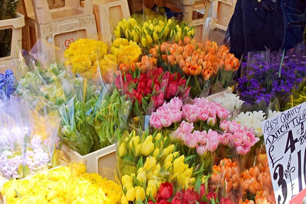 Tulips columbia road flower market