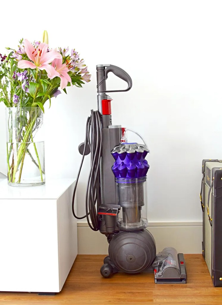 Dyson Small Ball Animal Vacuum Review