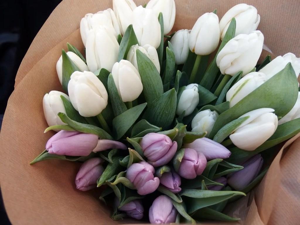 Tulips Portobello Market
