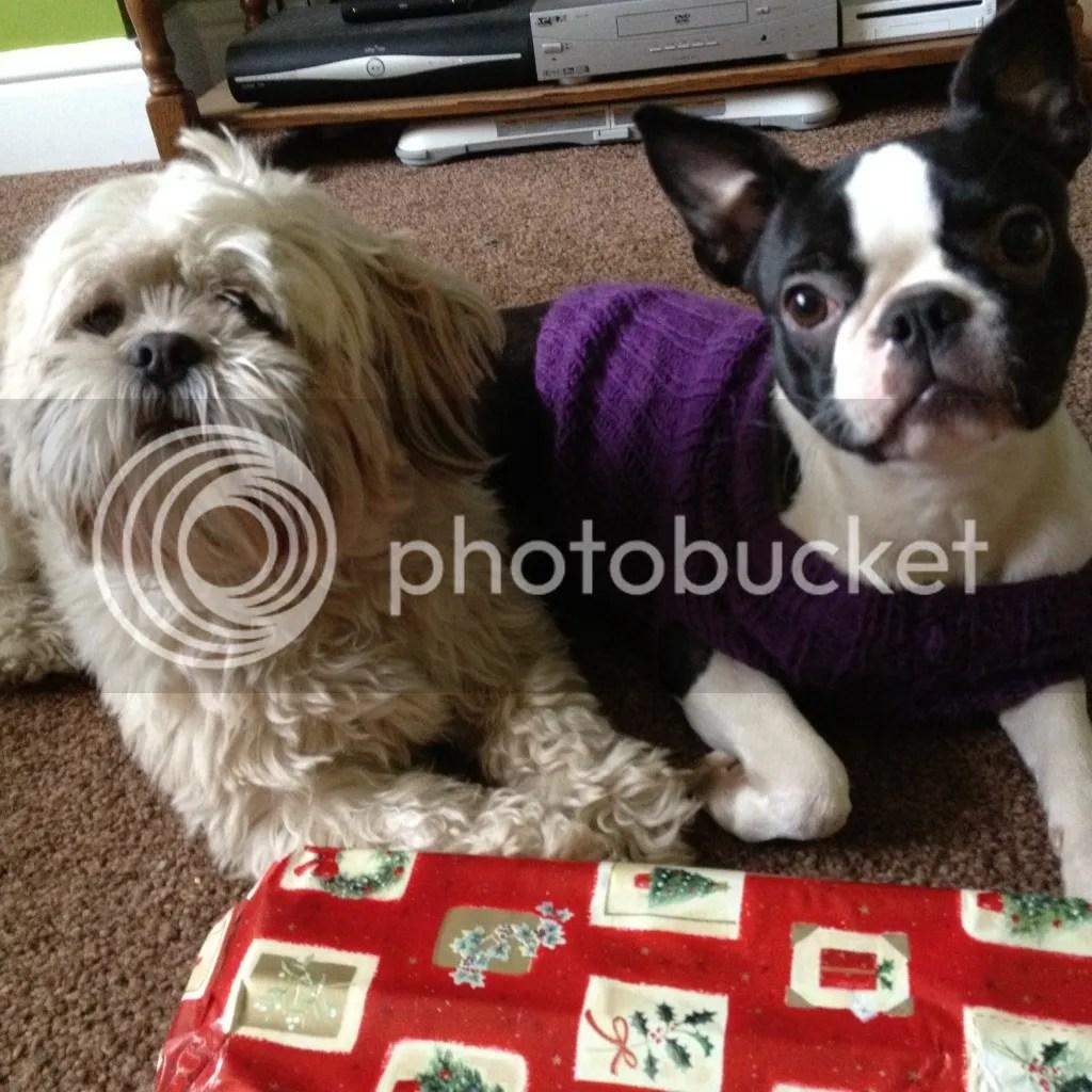 Terrier Sew Boston Pinterest