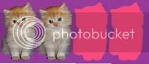 2 Kitty Stars!!!