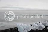 photo 69 iceberg beach 03_zpsawaz1e53.jpg
