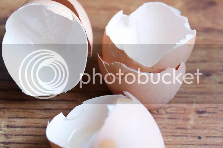 photo Eggshells_zpsbc52af07.jpg