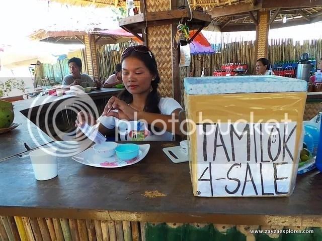 www.zayzaexplores.com