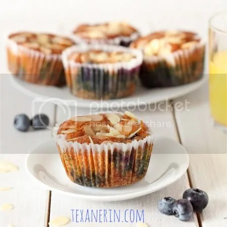 Almond Lemon Blueberry Muffins - Gluten-free and Grain-free | texanerin.com