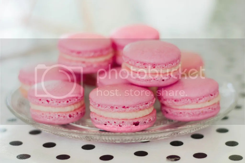 photo macarons_zpsyppzx5mg.jpg