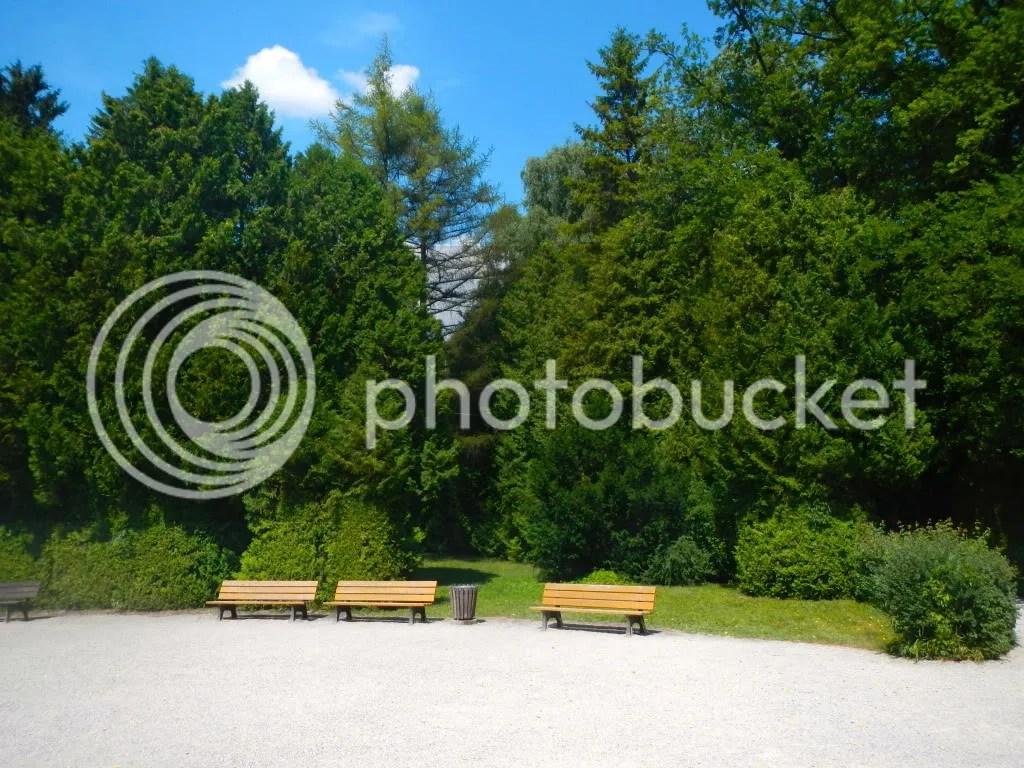 photo DSCN2806_zps349988c3.jpg