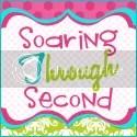 Soaring Through Second