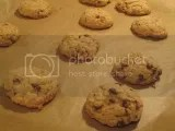 Heartland Gourmet Gluten-Free Chocolate Chip Cookies