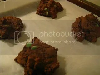 Gluten-Free Chocolate Scones with Dark Chocolate & Mint Morsels