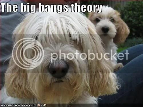 Big bangs theory