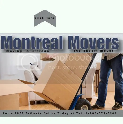miami movers boxes