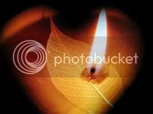 photo candlear1.jpg