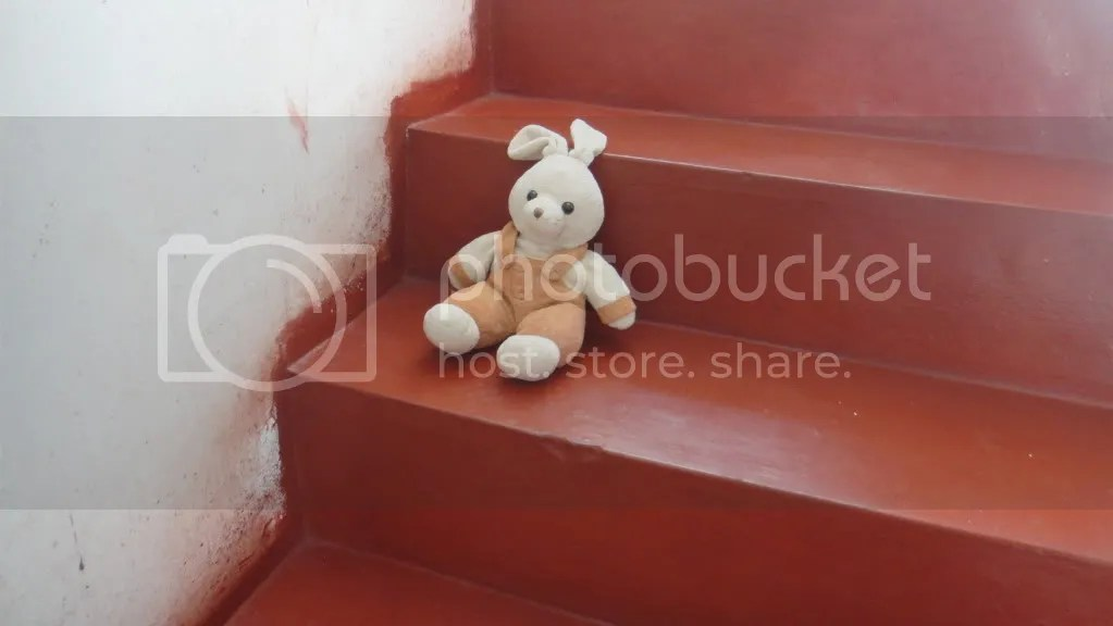 rabbit teddy waiting on the stairs