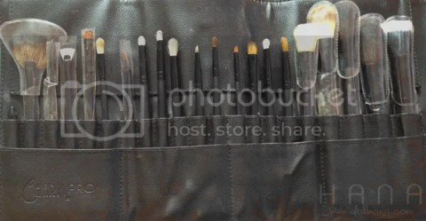 Charm Pro 21 pc Makeup Brush