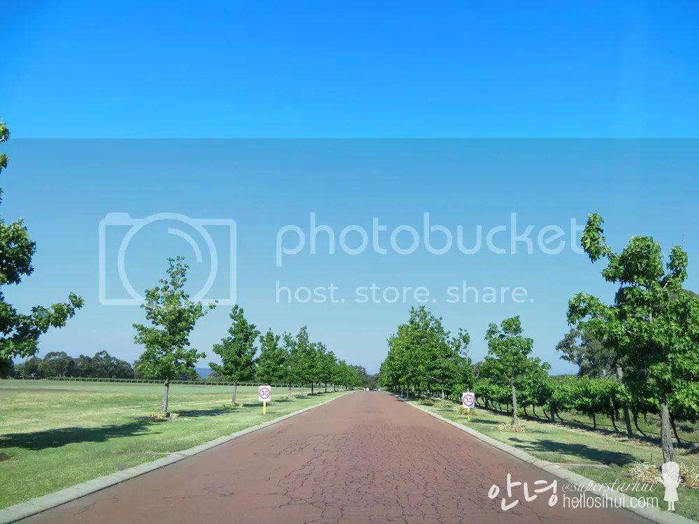 photo IMG_4799 copy_zpsv6w0rej9.jpg